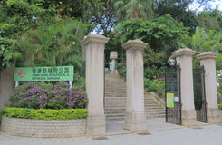 Jardins de Hong Kong Zoological And Botanical foto de stock royalty free
