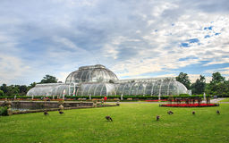 Jardins de Kew, Angleterre Photos stock