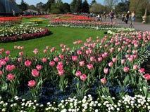 Jardins de Kew em Londres Foto de Stock