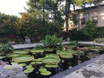 Jardins de Longwood foto de stock