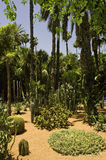 Jardins de Majorelle Photographie stock libre de droits