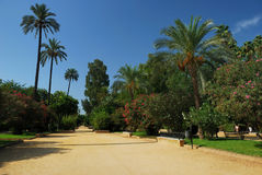 Jardins de Murillo Foto de Stock Royalty Free