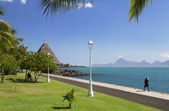 Jardins de Paofai, Pape'ete,塔希提岛,法属玻里尼西亚 库存图片
