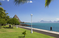 Jardins de Paofai, Pape'ete, Tahiti, Polinesia francese Immagini Stock