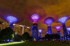 Jardins de parc par la baie - Singapour Photo stock