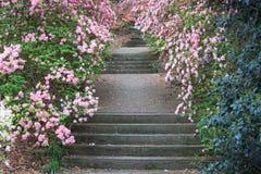 Jardins de pedra exteriores Geórgia de Callaway da escadaria Foto de Stock Royalty Free