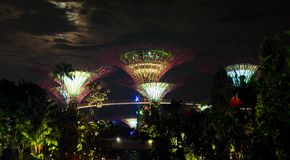 Jardins de Singapour par la baie Photo stock