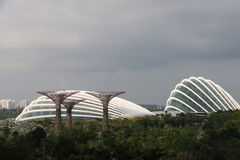 Jardins de Singapura pela baía Imagem de Stock