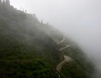 Jardins de thé de Darjeeling de manière de corde Photographie stock libre de droits