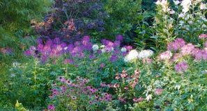 Jardins de Vandusen das flores fotografia de stock