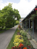 Jardins de Wilhelma, Estugarda fotografia de stock royalty free