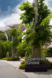 Jardins do parque pela baía em Singapura Foto de Stock Royalty Free