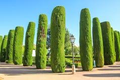 Jardins dos reis de Córdova Fotos de Stock