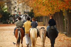 Jardins du Luxembourg. Children riding ponies in Jardins du Luxembourg (Luxembourg gardens) in Paris France stock image