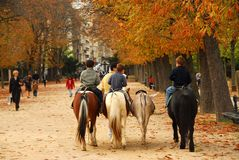 Jardins du Luxembourg. Children riding ponies in Jardins du Luxembourg (Luxembourg gardens) in Paris France stock photos