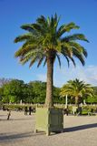 The Jardins du Luxembourg garden in Paris Royalty Free Stock Photography