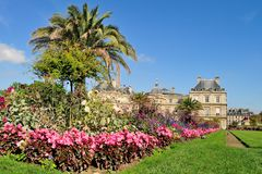 Jardins du luxembourgeois, Paris Photo libre de droits