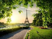 Jardins du Trocadero 免版税库存照片