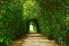 Jardins em Balcic imagem de stock