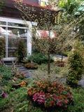 jardins em torno da casa Fotografia de Stock Royalty Free