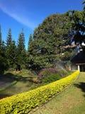 jardins em torno da casa Fotografia de Stock
