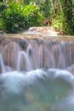 Jardins Enchanted em Jamaica fotografia de stock