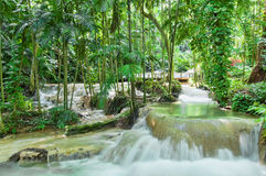 Jardins Enchanted em Jamaica fotos de stock