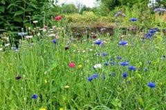 Jardins et grottes de Dewstow de fleurs Images libres de droits