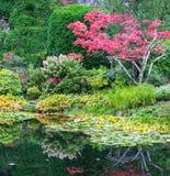 Jardins floraux étonnants de Butchart de parc Images libres de droits