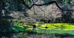 Jardins japonais Photographie stock libre de droits