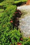 Jardins japoneses do zen na natureza Fotos de Stock Royalty Free