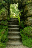 Jardins japoneses em Powerscourt, Ireland Imagens de Stock Royalty Free