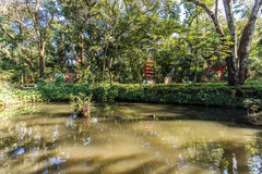 Jardins japoneses no jardim zoológico Fabio Barreto da cidade de Ribeirão Preto Sao Fotografia de Stock Royalty Free