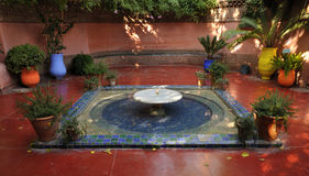 Jardins Majorelle in Marrakech Stock Photos