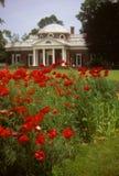 Jardins na HOME de Jefferson em Monticello foto de stock royalty free