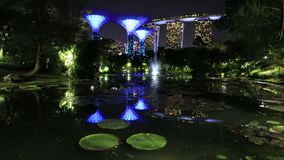 Jardins na noite da baía video estoque