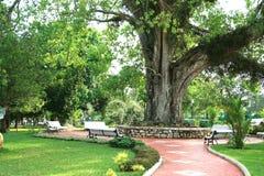 Jardins públicos imagem de stock