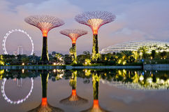 Jardins par la baie à Singapour Image libre de droits