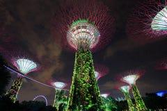 Jardins par la baie la nuit, Singapour Photos libres de droits