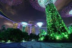 Jardins par la baie la nuit, Singapour Image libre de droits