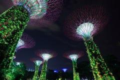 Jardins par la baie la nuit, Singapour Photo libre de droits