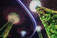 Jardins par la baie la nuit, Singapour Photographie stock