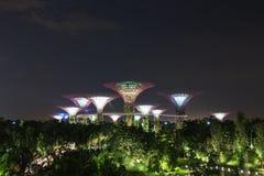 Jardins par la baie la nuit, Singapour Images stock