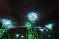Jardins par la baie la nuit, Singapour Photos stock