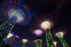 Jardins par la baie la nuit, Singapour Image stock