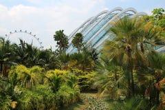 Jardins par la baie - Singapour Images stock