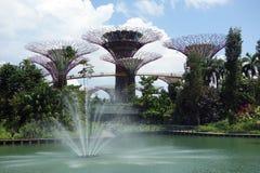 Jardins par la baie, Singapour, Singapour photographie stock libre de droits