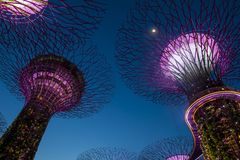 Jardins par le compartiment à Singapour photos libres de droits