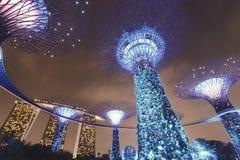 Jardins par le compartiment à Singapour Photo libre de droits