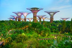 Jardins par le compartiment, Singapour Images stock